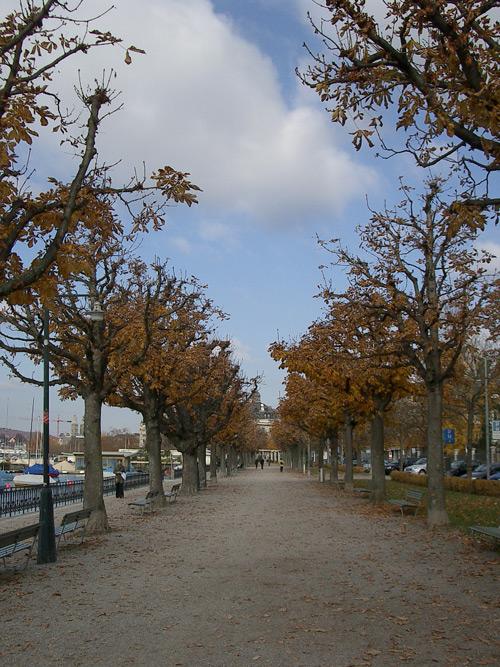Autumn 07